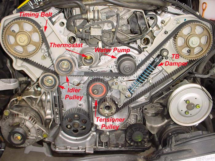 Audipages abz timing belt parts